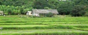 Travel to Amila,