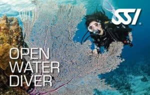 SSI Open Water Diver, book,