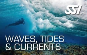 SSI WAVES TIDES AND CURRENT, book,